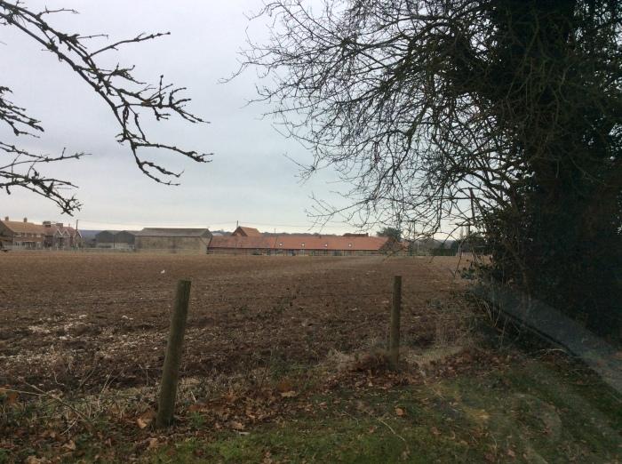 Farm field in winter