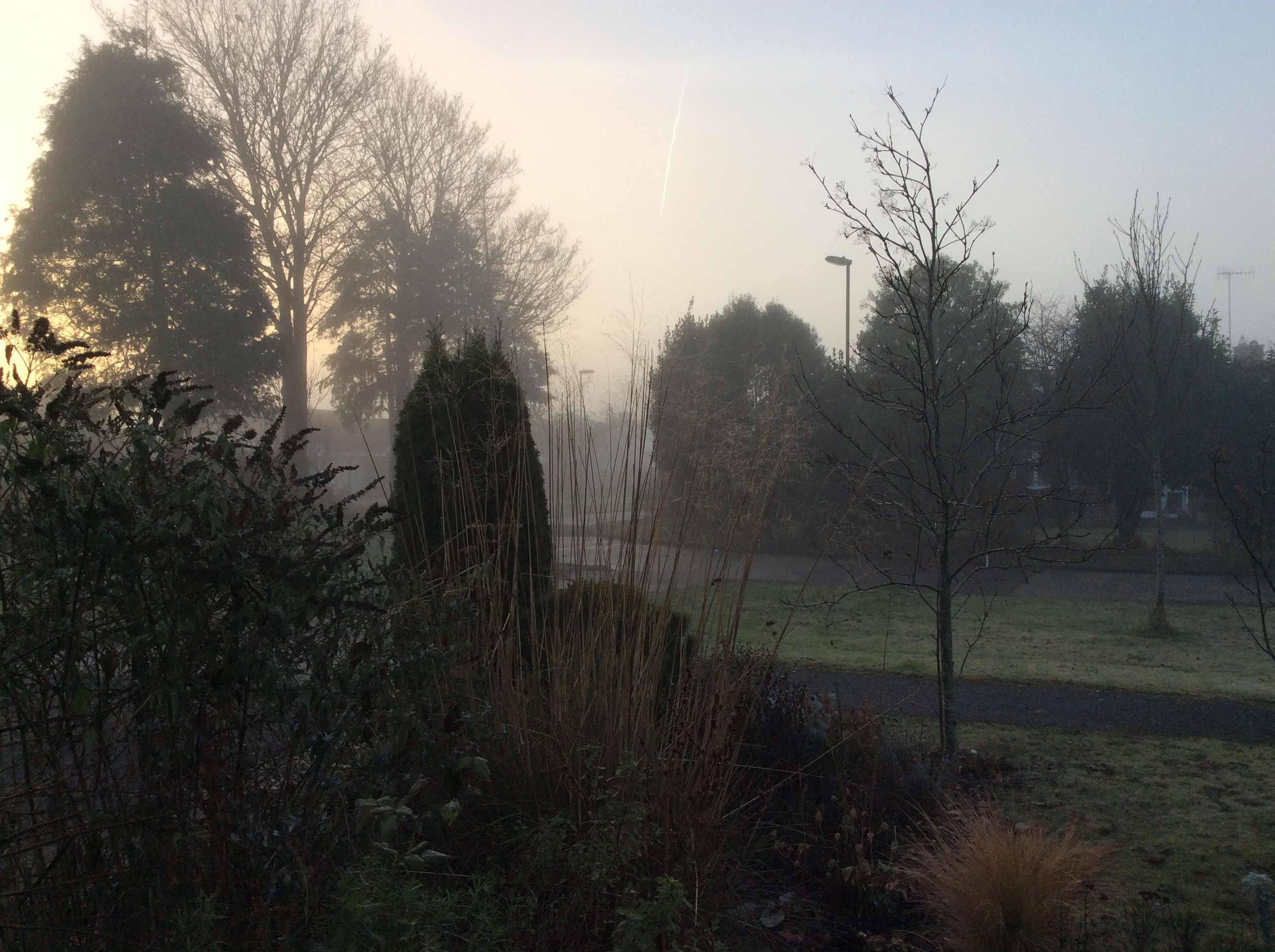 A misty early moring scene
