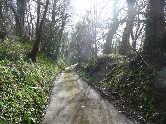 A Cotswold lane in spring