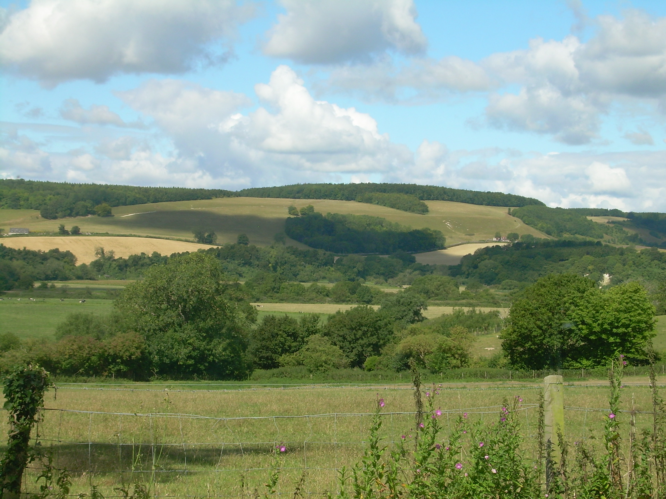 The Arun Valley in the South Downs
