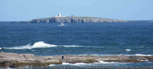 View of Inner Farne island from the coast