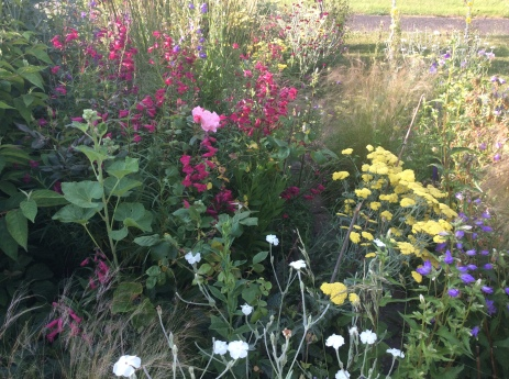 Ever-changing Cottage borders