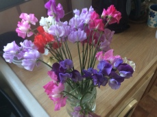 Sweet Peas. There's never too much of these.