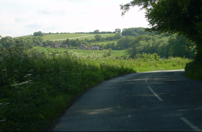 A country lane in summer
