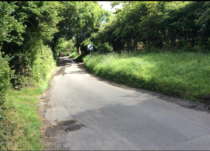 A West Sussex lane