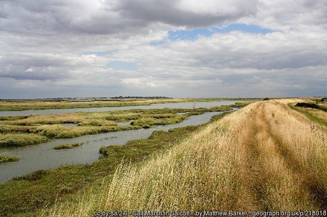 On the Essex Marshes