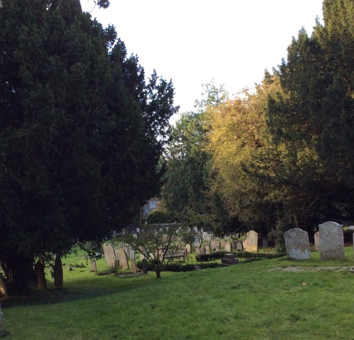 Early sun in the churchyard