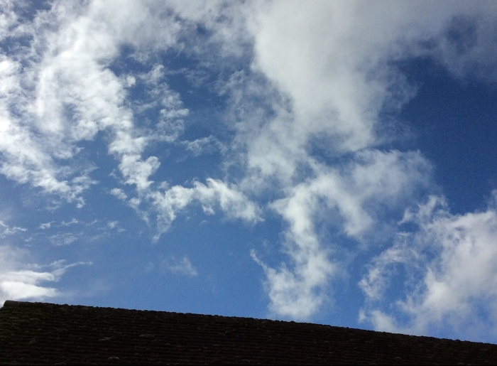 Sky for Swallows over the house tops.