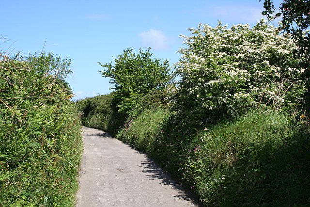 A Country Lane with JohnClare