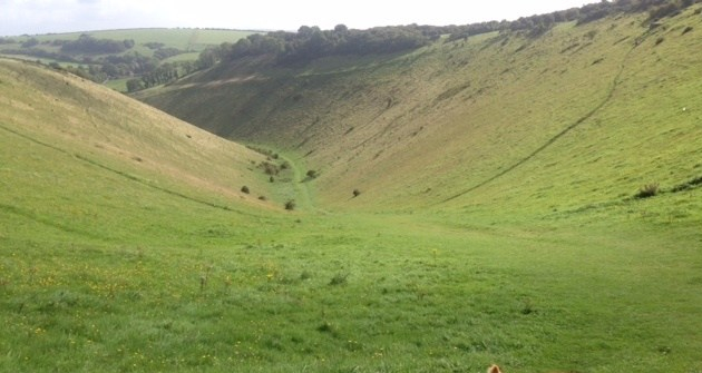 These Glorious SouthDowns