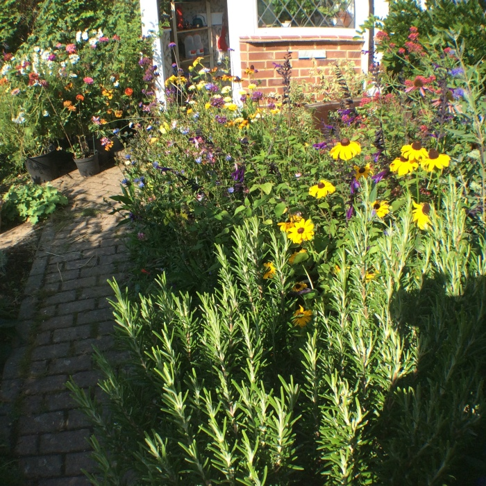 Annual flowers around the front door.