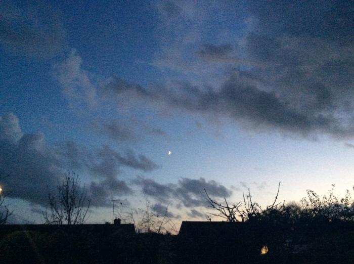Winter's Night Sky