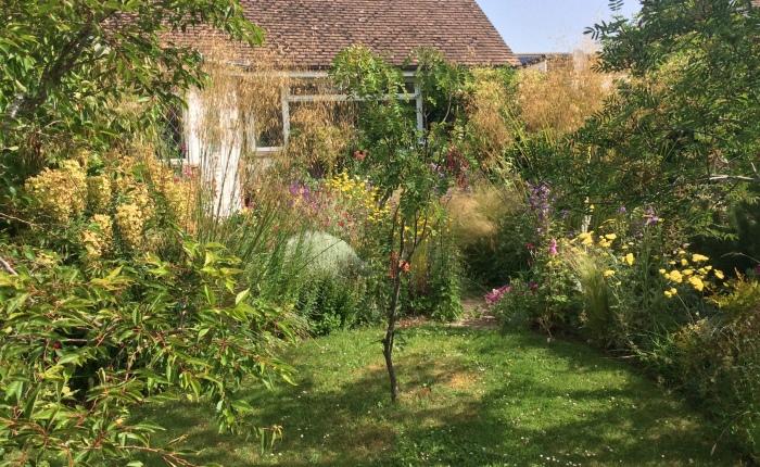 Mid-summer's garden
