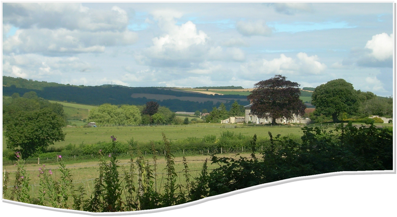 The Arun valley West Sussex