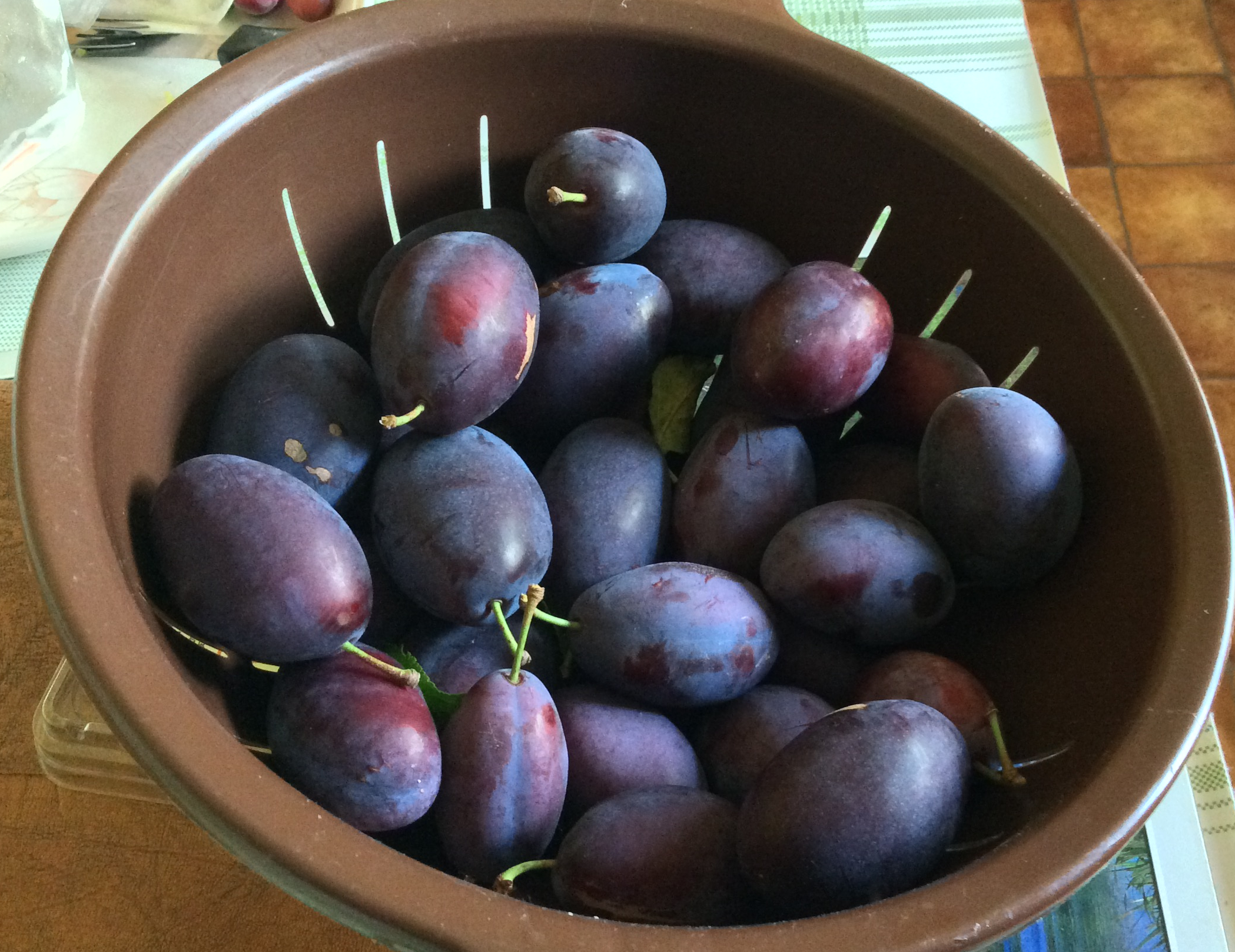 A bowl of ripe damsons