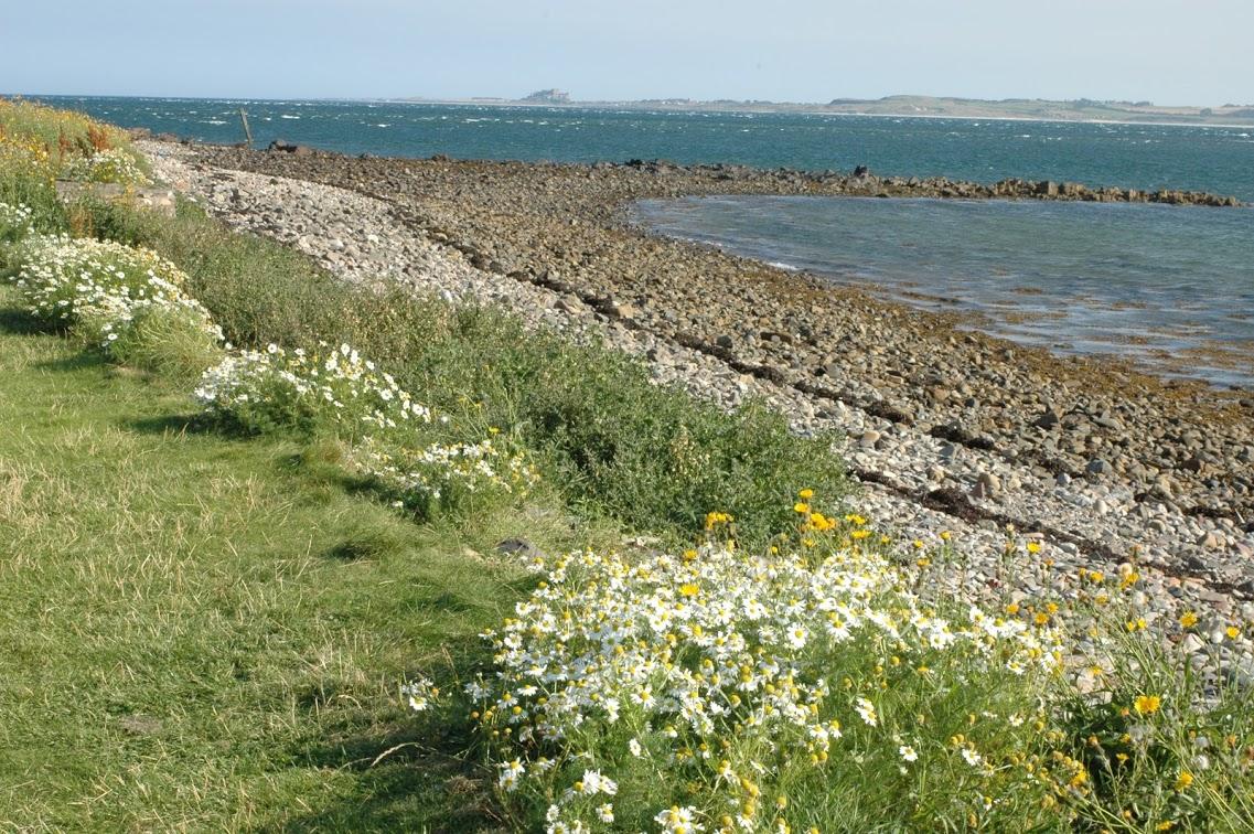 Lindisfarne island, Northumbria