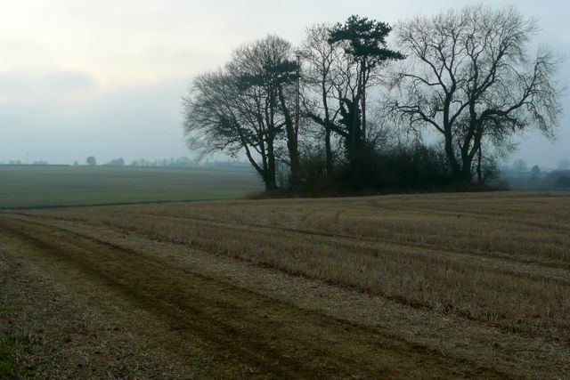 Prehistoric tumulus in the Cotswolds