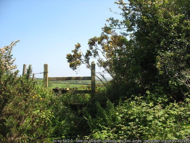 An overgrown footpath.