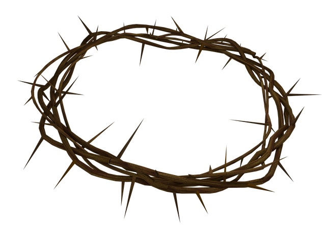 Christ's cross of thorns
