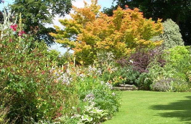 Lawn and shrub border at Denmans Garden