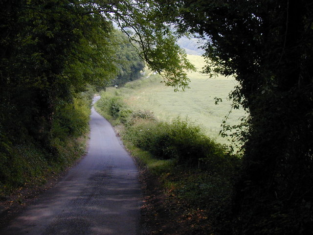 The Pilgrim's Way along edge of wood in Kent