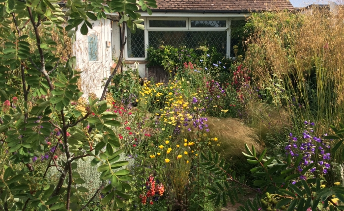 A Cottage Garden Open Day