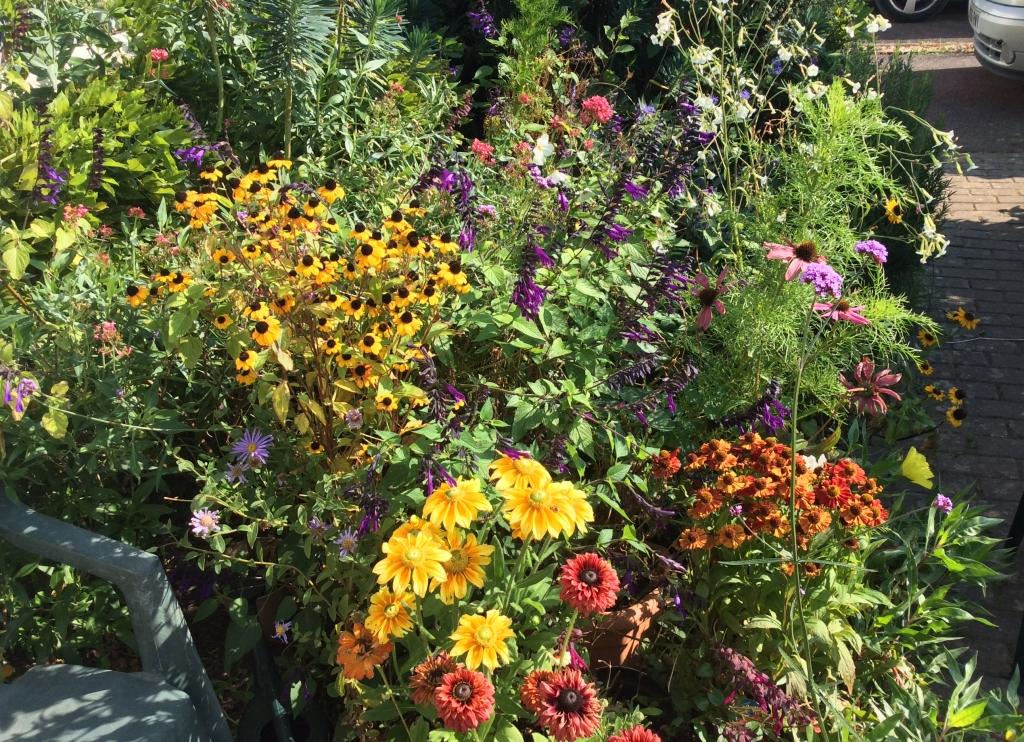 September flower display
