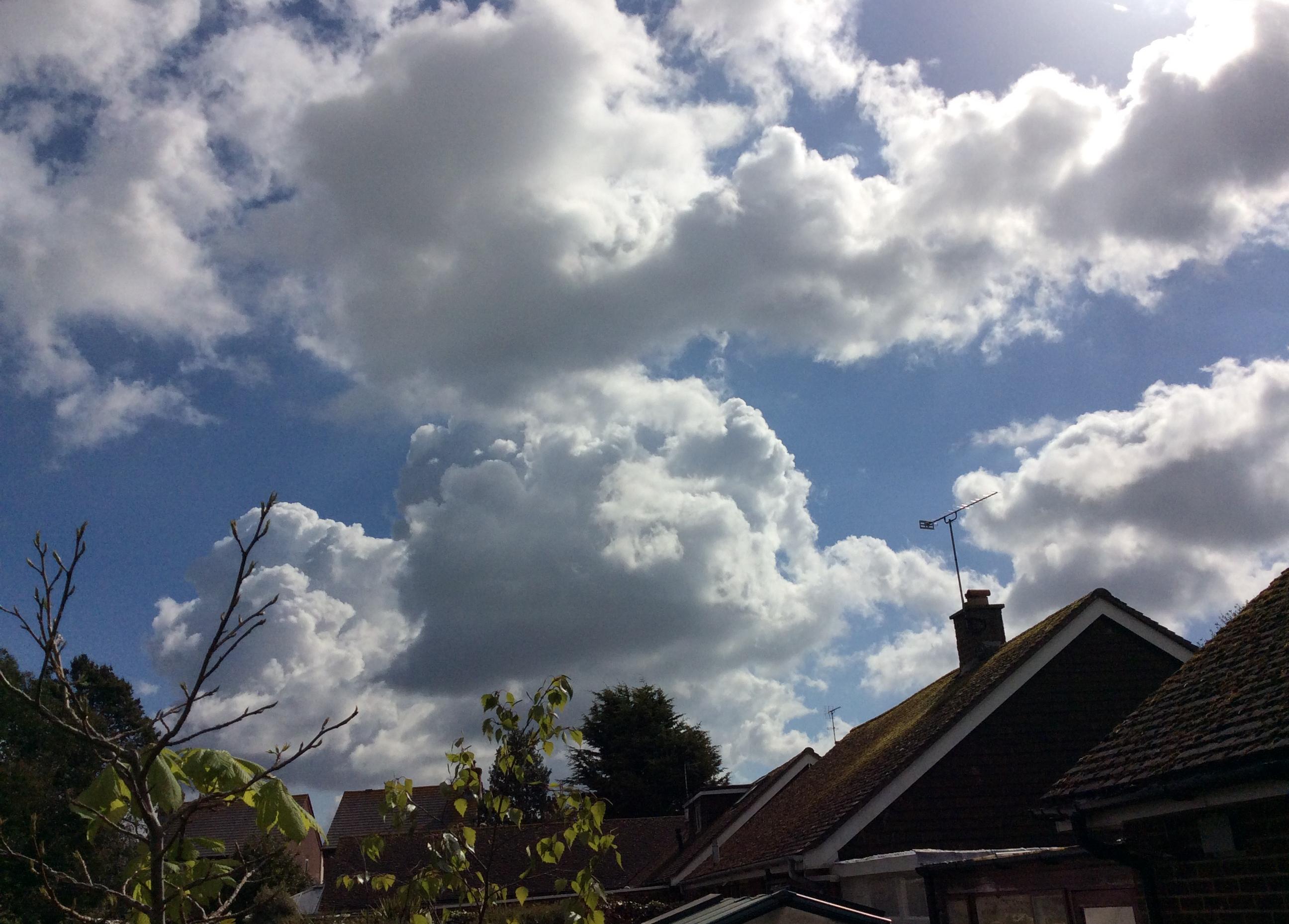 Fair weather cumulus clouds
