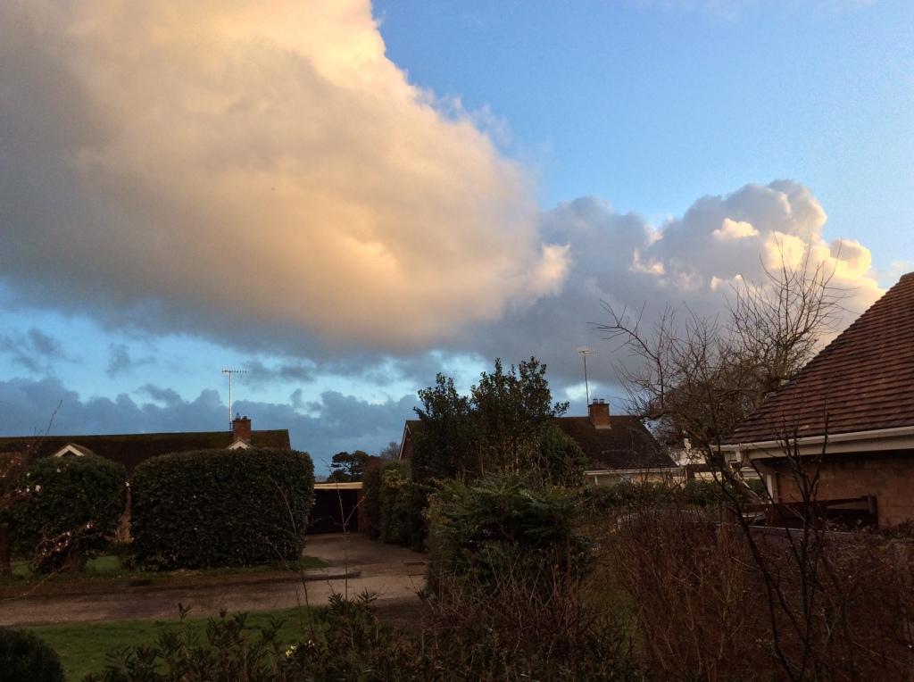 Pink evening cumulus cloud