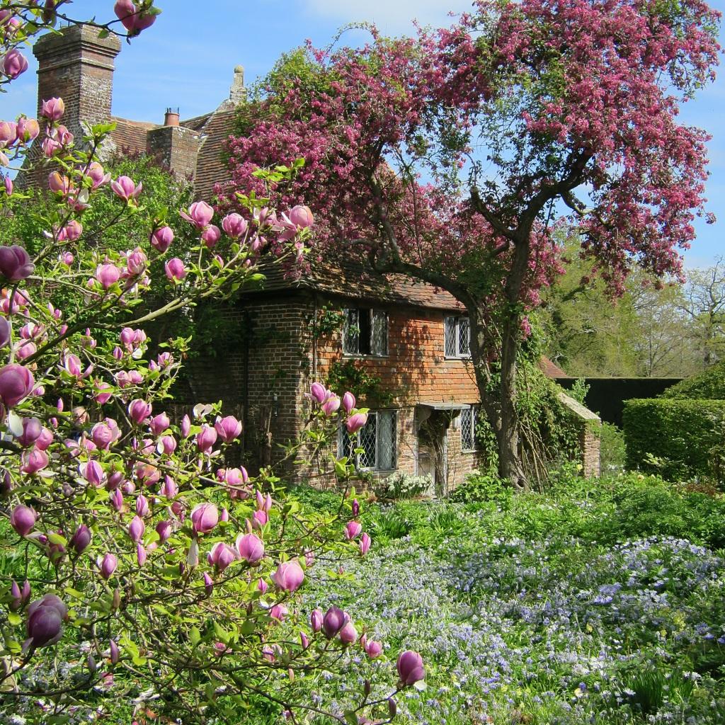 Pink blossom at the old priests cottage at Sissinghurst