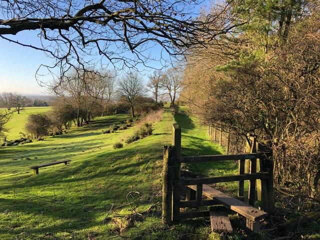 Part of Roman road, Stane Street in Sussex