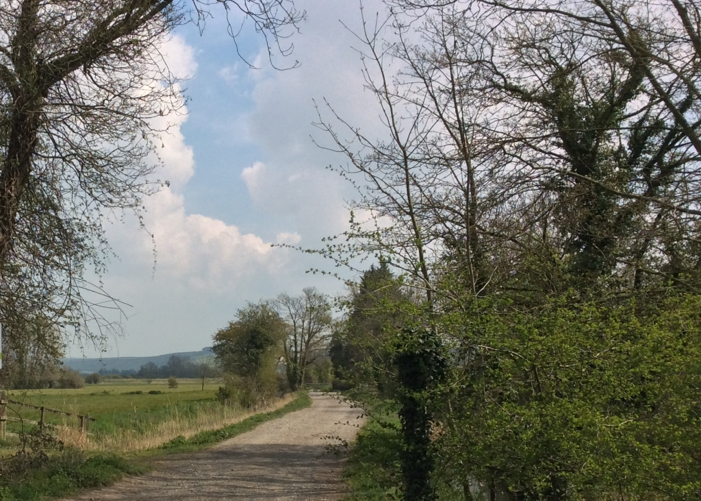 A lane in the Arun valley
