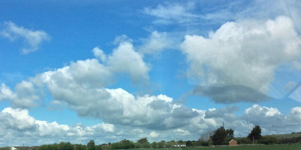 Summer cumulus clouds over wheat field